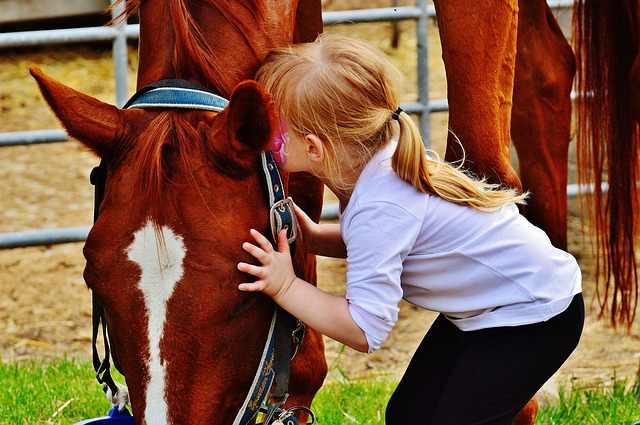 bambino-cavallo-fattoria-animali-bosco-natura-famiglia-agriturismo-gita-weekend