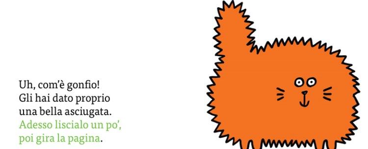 libro gatto minibombo