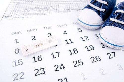 Calendario Dell Ovulazione.Calendario Dell Ovulazione Qualche Info Utile Per Calcolare