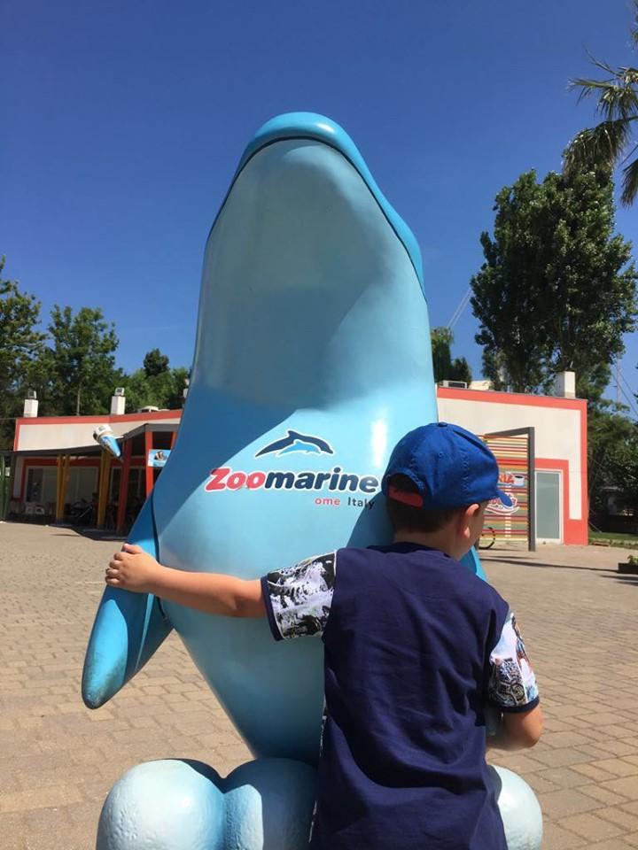 Zoomarine: l'imperdibile parco per grandi e piccini