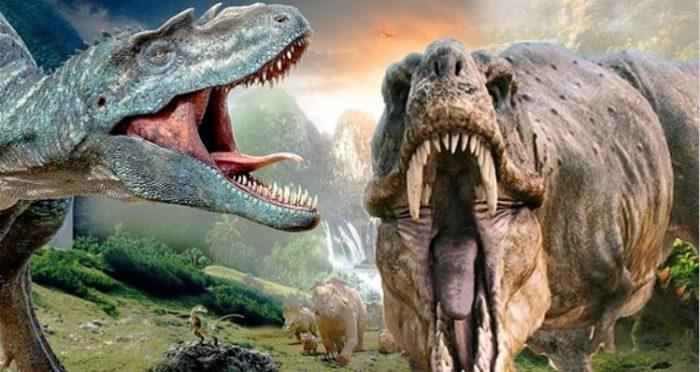 laboratori dinosauri stadio domiziano