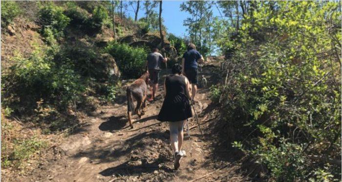 Parco cinque sensi escursione