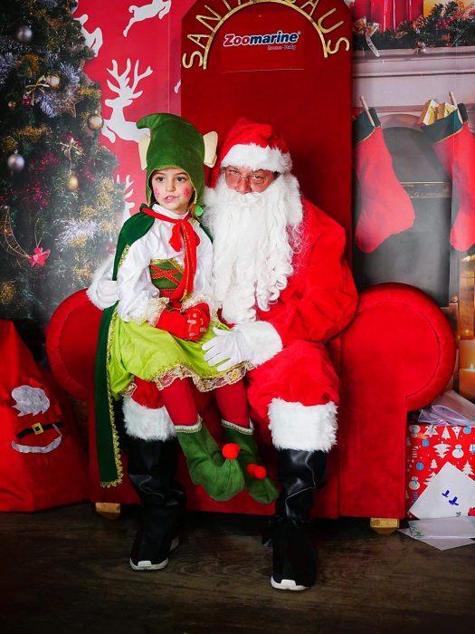 Un magico Natale a Zoomarine