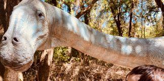 WWF di Macchiagrande