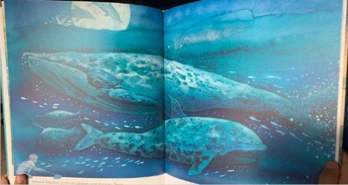 Un mondo solo_oceano